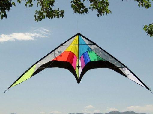 stunt kite dual line
