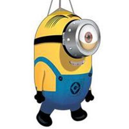 Despicable Me Minion Windsocks - Tumbleweeds and ...