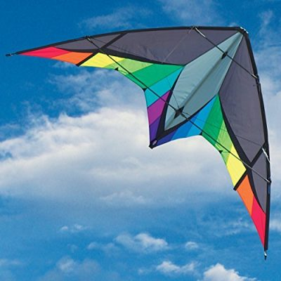 stunt kite panther
