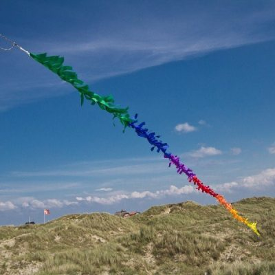 HQ Rainbow Fringe Kite Tail