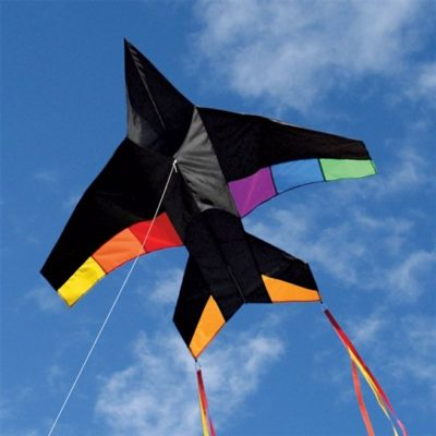 Airplane Jet Kite