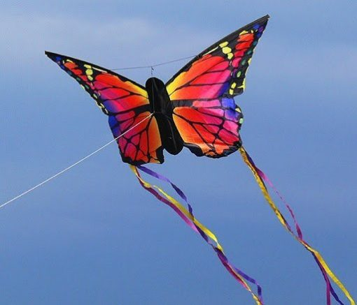 HQ Ruby Butterfly Kite