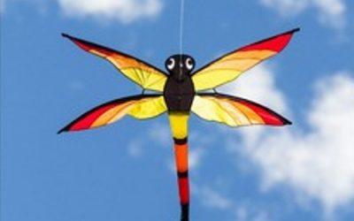 Kites & Pizza