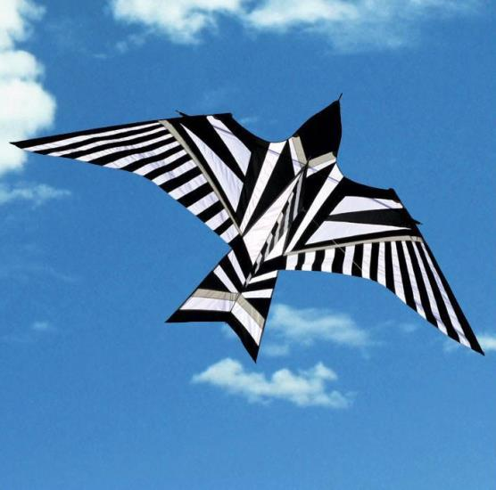 Sky Bird Kite Tumbleweeds And Tarantulas Kites And More